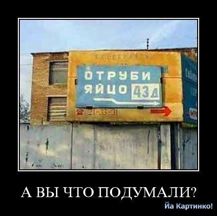 1258734881_prikolnye_kartinki_s_nadpisyami_00.jpg